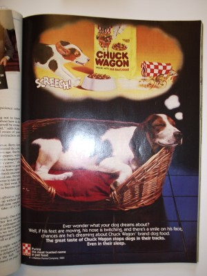 Purina-Chuck-Wagon-basset-hound-dreaming-basket-web