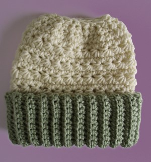 Crocheted Beanie Messy Bun Hat Double Brim Vanilla Celery Green 5dc6c201646